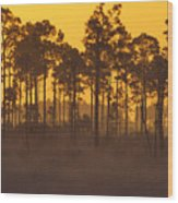 Morning In Mahogany Hammock Wood Print