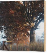 Morning In Tennessee Wood Print