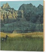 Morning In The Badlands Wood Print