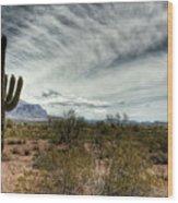 Morning In The Desert Wood Print