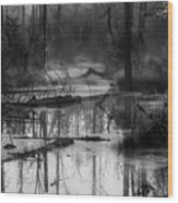 Morning In The Swamp Wood Print