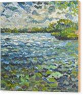 Morning Light At Lake Ida Wood Print