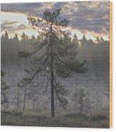 Morning Light At Saari-soljonen 7 Wood Print