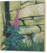 Morning Light On A Foxglove Wood Print