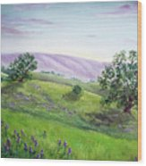 Morning Lupines Wood Print