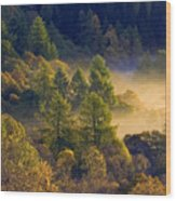 Morning Mist In The Trossachs Wood Print