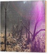 Morning Misty Flare Wood Print