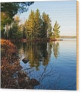 Morning On Chad Lake 4 Wood Print by Larry Ricker