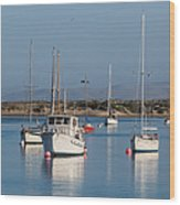 Morning On Morro Bay B3984 Wood Print