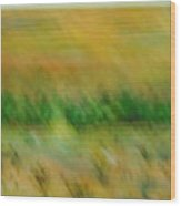 Morning On The Lake With Whooping Cranes Wood Print by BJ Abrams