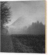Morning Scene In Olympic National Park Wood Print
