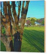 Morning Shadows In Waimea Wood Print