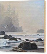 Morning Shore Wood Print