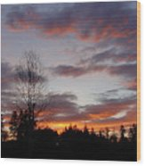 Morning Silhouetted - 1 Wood Print