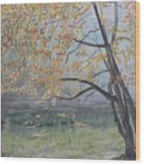 Morning Solitude Wood Print