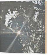 Morning Star 16-01 Wood Print