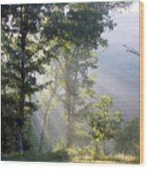 Morning Sun Wood Print by Kristin Elmquist