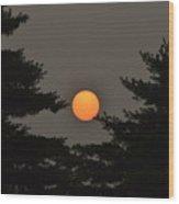 Morning Sun Through Haze Wood Print