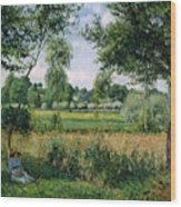 Morning Sunlight Effect At Eragny Wood Print by Camille Pissarro