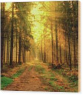 Morning Sunshine Wood Print