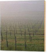 Morning Vineyard Wood Print by Balanced Art