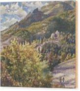 Morning Walk At Mount Sanitas Wood Print