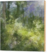 Morning Walk In The Forest Wood Print