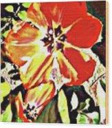 Moro Bright Wood Print