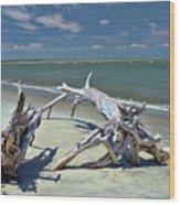 Morris Island Driftwood Wood Print