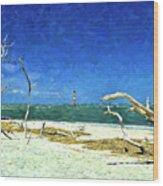 Morris Island Lighthouse 2 Wood Print