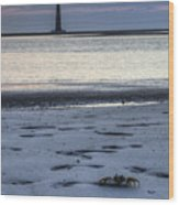 Morris Island Lighthouse And Crab Wood Print
