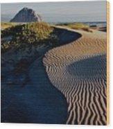 Morro Strand State Beach, California Wood Print