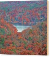 Morrow Mountain Overlook Wood Print