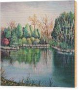 Morton Arboretum No.2 Wood Print