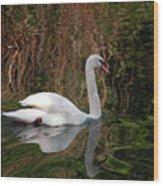 Mosaic Curious Swan  Wood Print