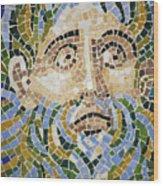 Mosaic Face Fountain Detail Wood Print