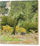 Mosaicanada 150 Display Of Horses 2 Wood Print