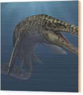 Mosasaurus Hoffmanni Swimming Wood Print
