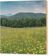 Moses Cone Meadow Wood Print