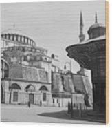 Mosque In Turkey Wood Print