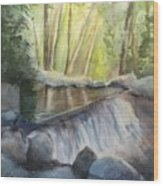 Mosquito Creek 3 Wood Print