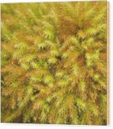 Moss Abstract Wood Print