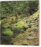 Moss By The Stream Wood Print