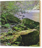 Moss Covered Boulders Wood Print