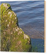 Moss Covered Rock And Ripples On The Water Wood Print
