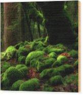 Moss Covered Rocks And Tree Yosemite Np California Wood Print