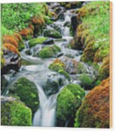 Moss Covered Stream Wood Print