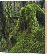 Moss Covered Tree Stump Wood Print