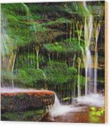 Moss Falls - 2981-2 Wood Print