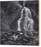 Moss Glen Falls - Monochrome Wood Print